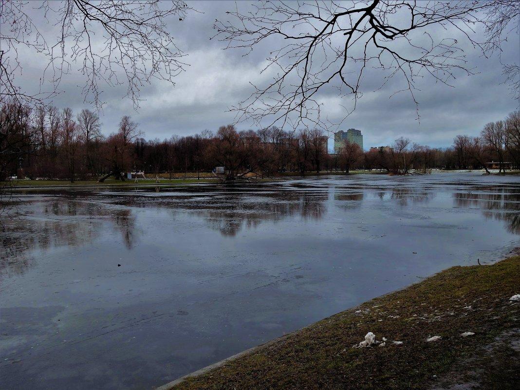 Парк Победы в декабре... - Sergey Gordoff