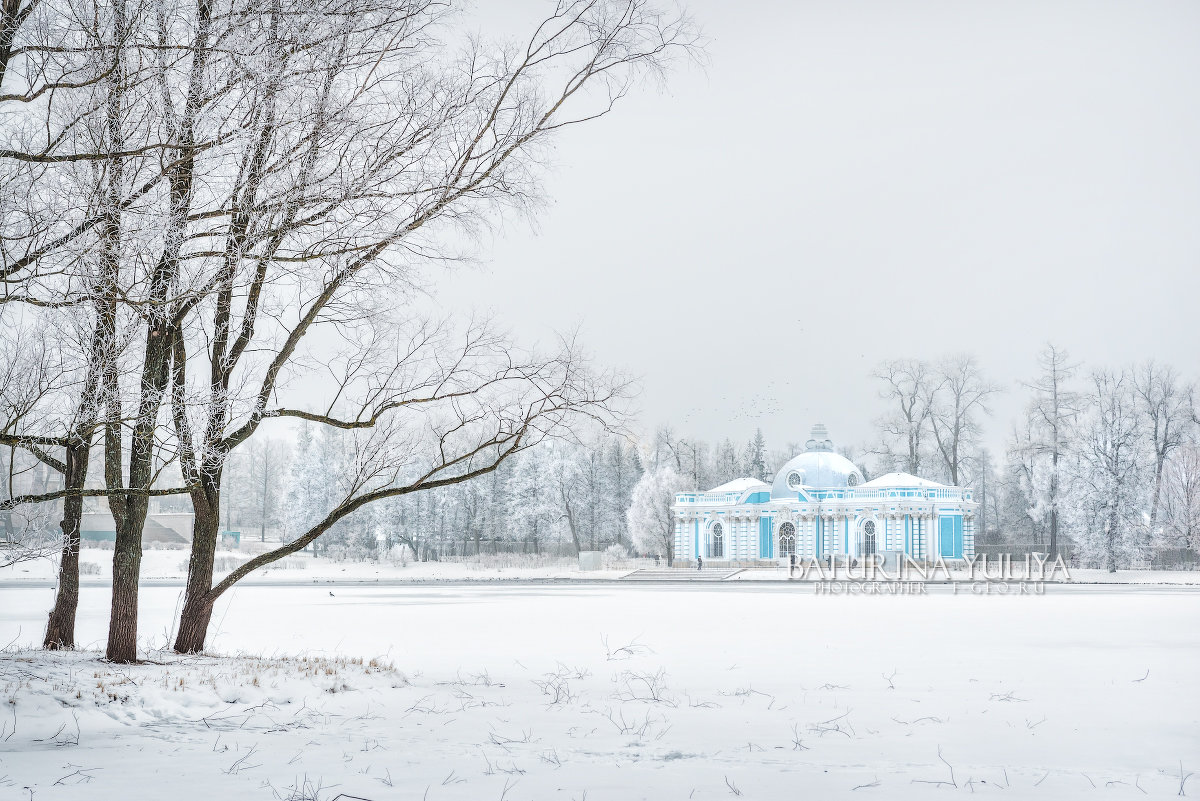 Грот и деревья - Юлия Батурина