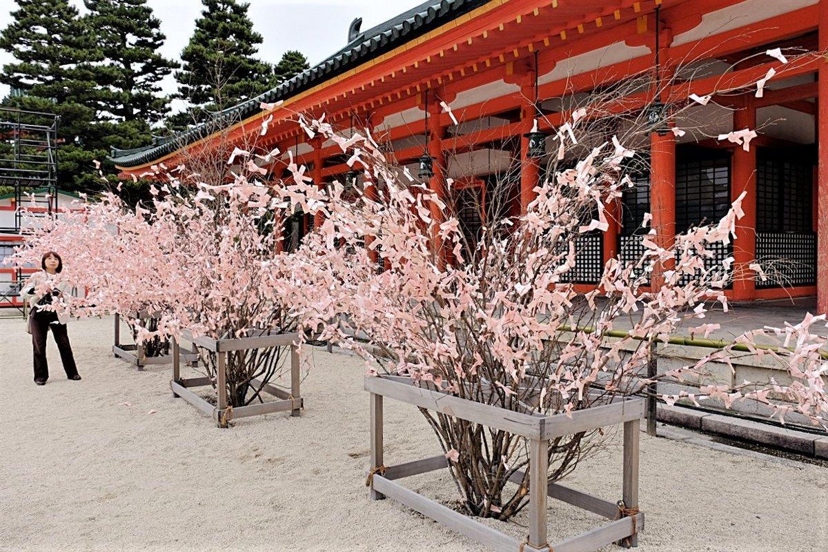 Омикудзи Храма Хэйан-дзингу Киото - Swetlana V