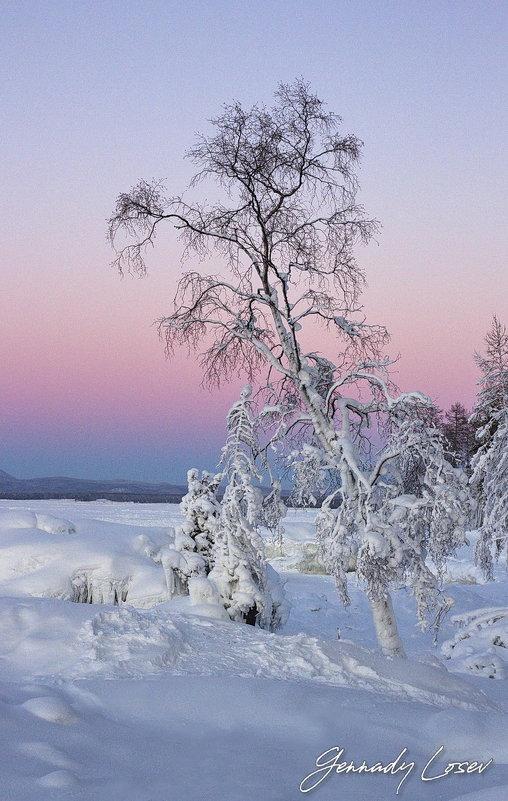 на закате - Геннадий Лосев