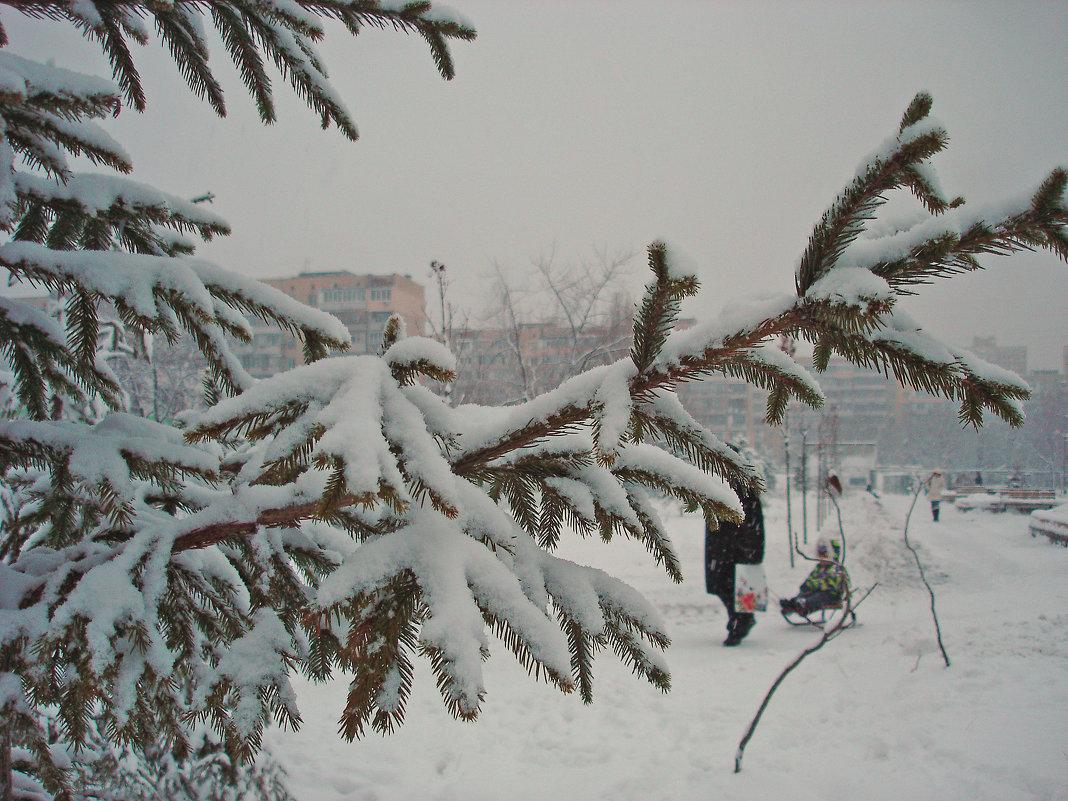 Зимняя зарисовка - Тамара Бедай