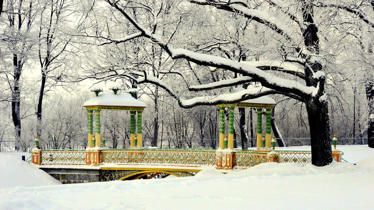 Зимой в Александровском парке  2 - Сергей