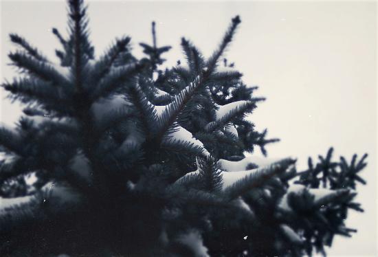 Зима - Кристина Кеннетт