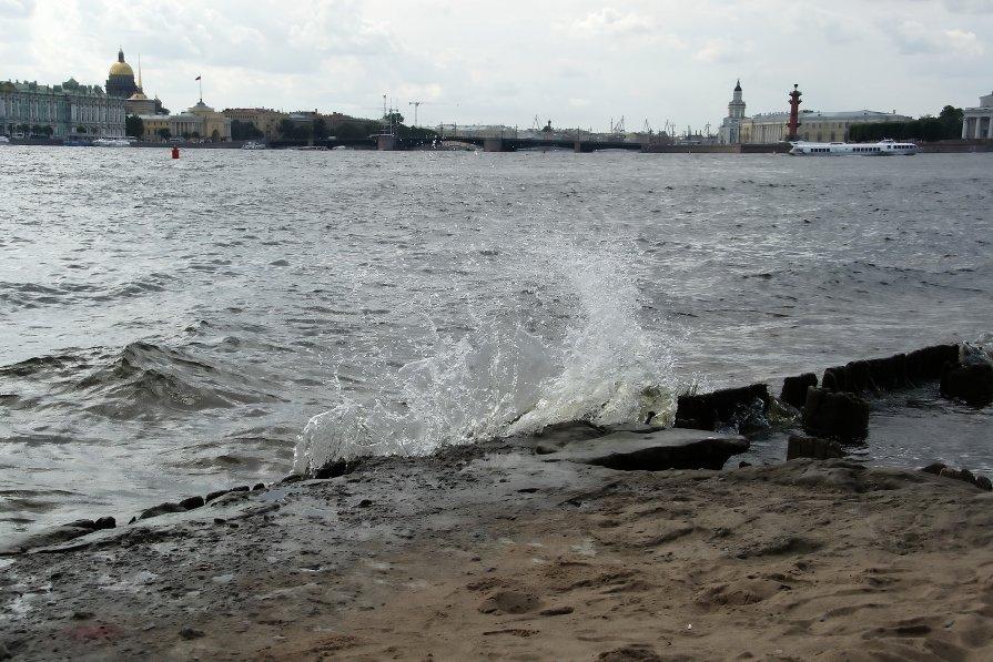 Вид с Петропавловской крепости - Алексей Кудрявцев