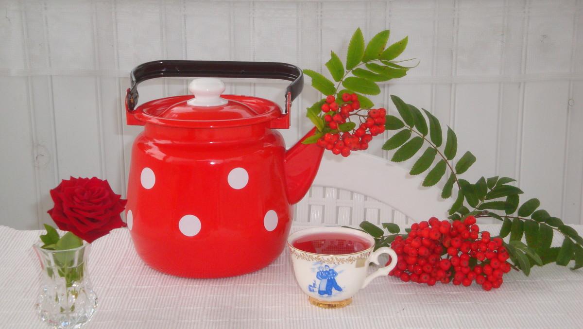 Рябина красная в чай
