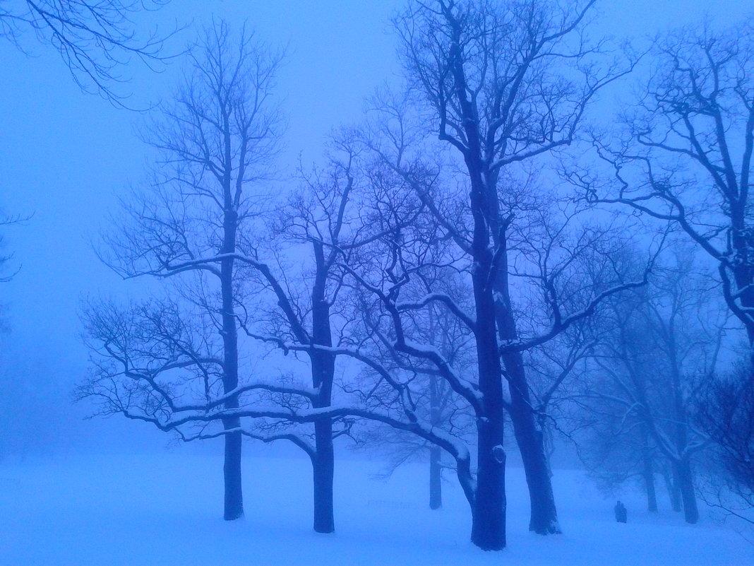 Туман - Сапсан