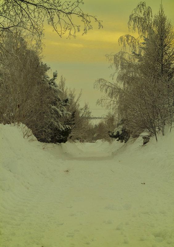 зима - Анастасия Мойсук