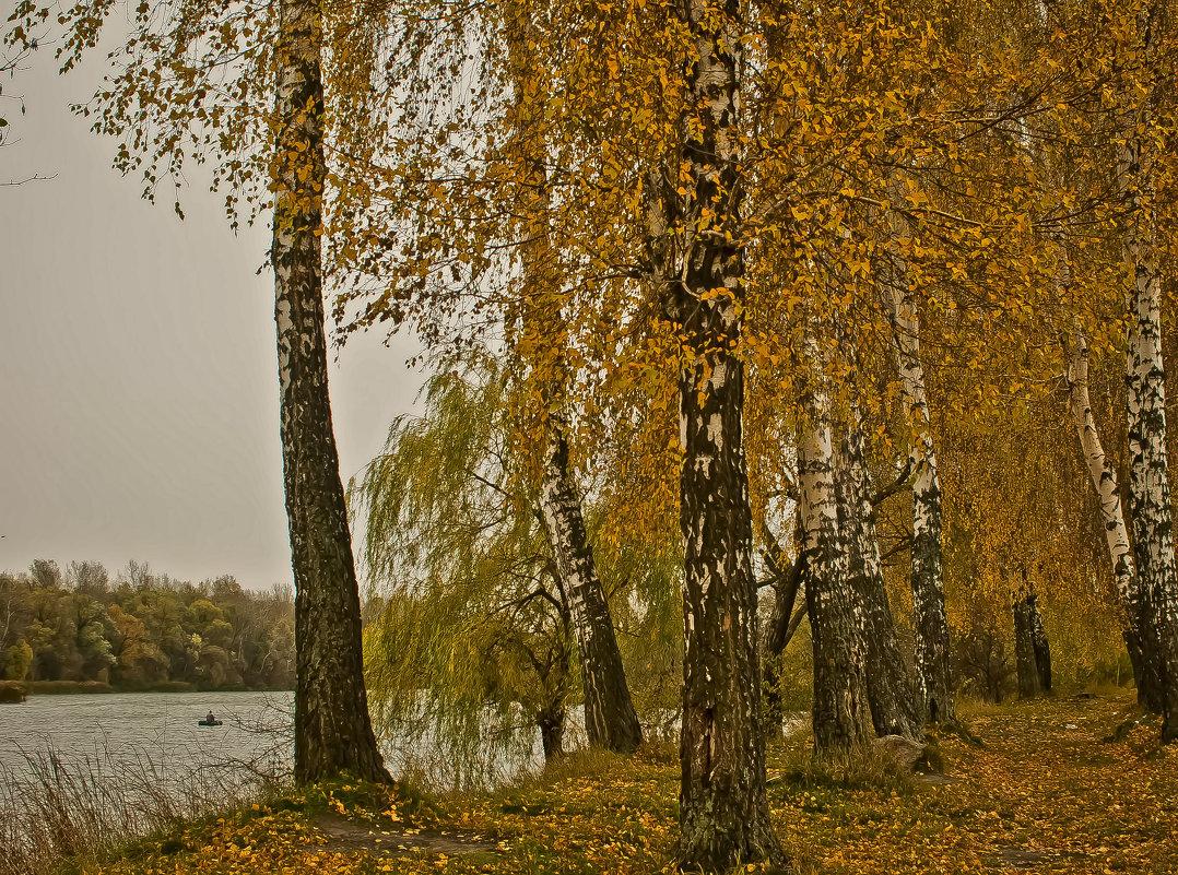 Осенняя аллейка у реки
