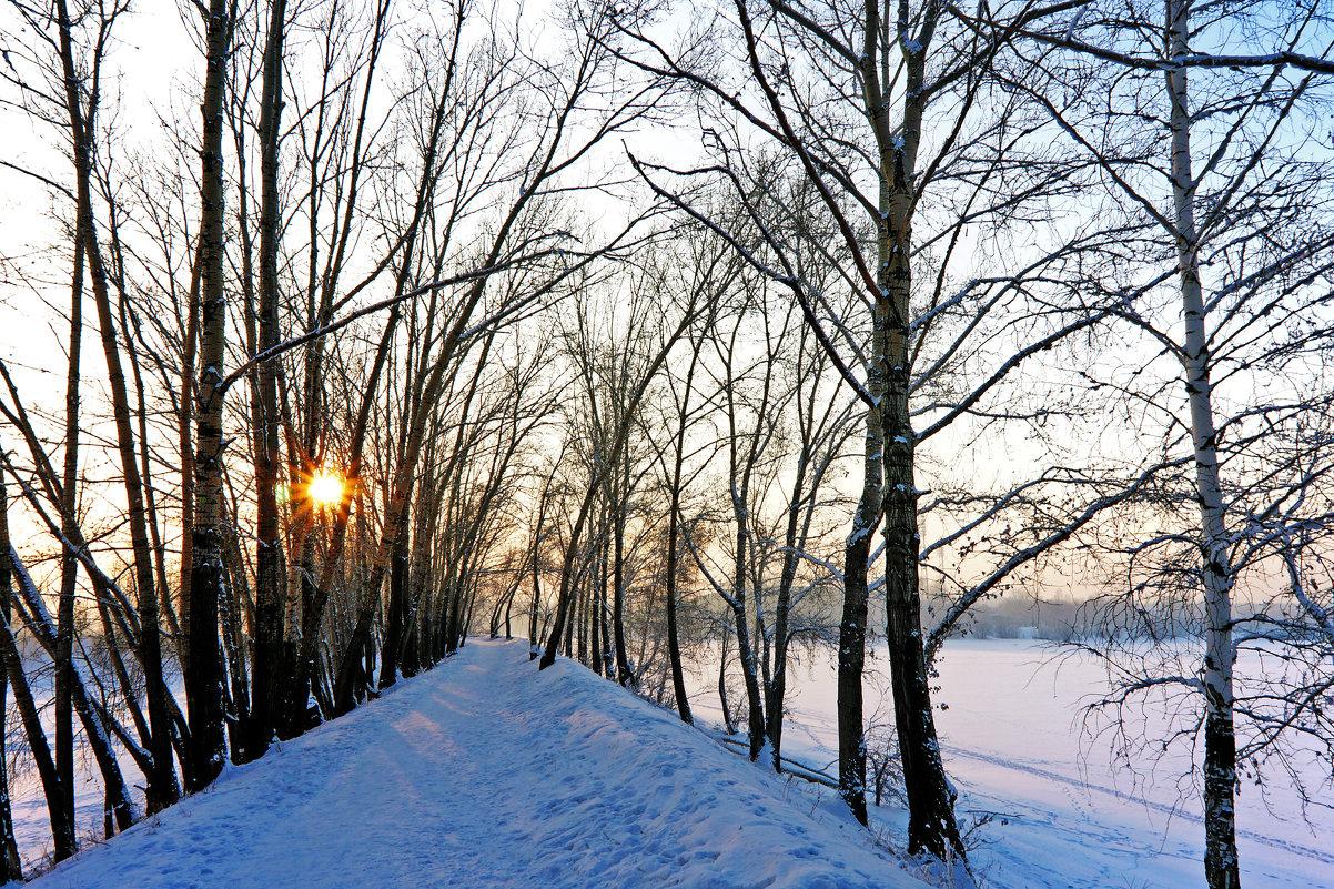 Зимний день - Екатерина Торганская