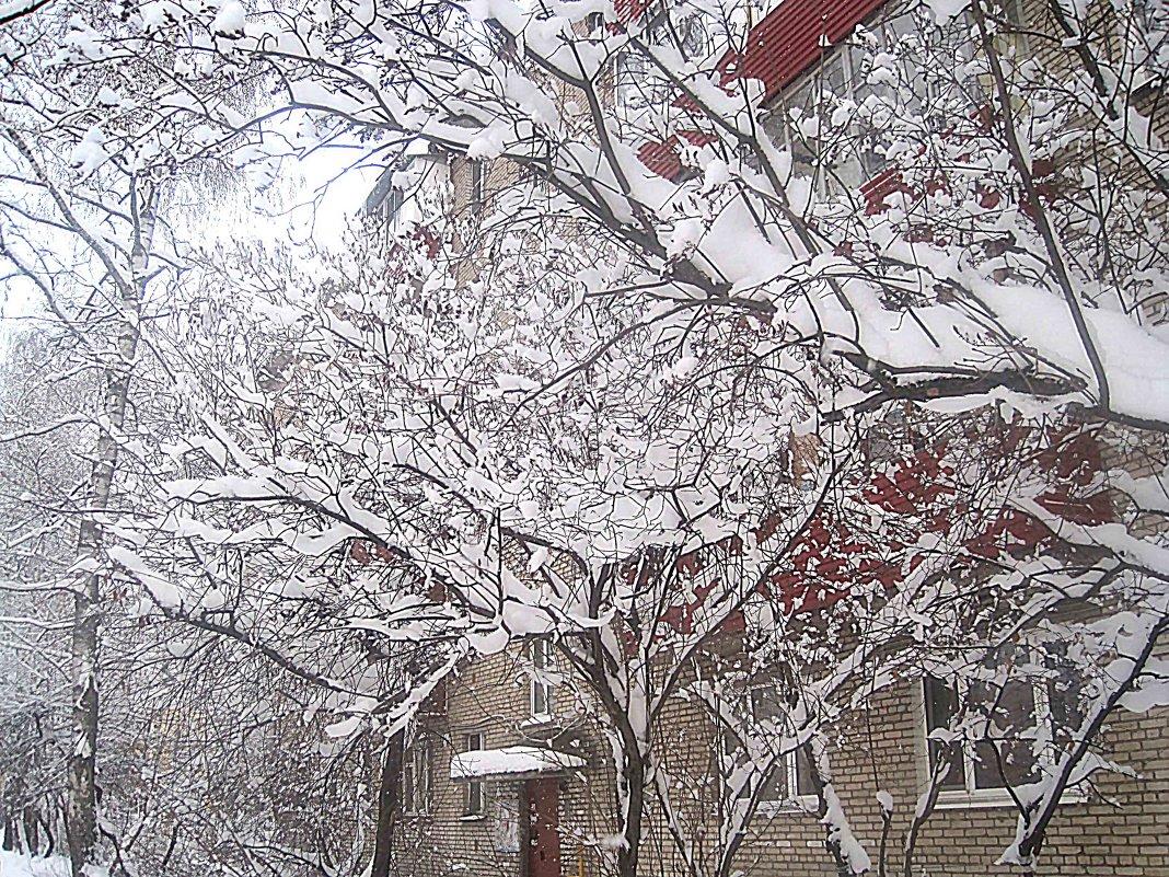 Снежные узоры - Елена Семигина