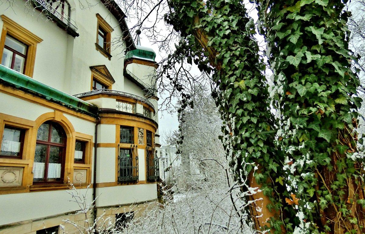 По зимнему  Лауфу - backareva.irina Бакарева