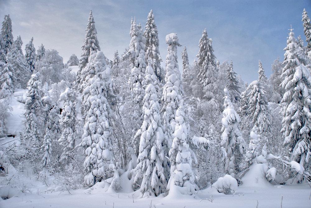 Зимняя сказка на Шунуте - Галина Ильясова