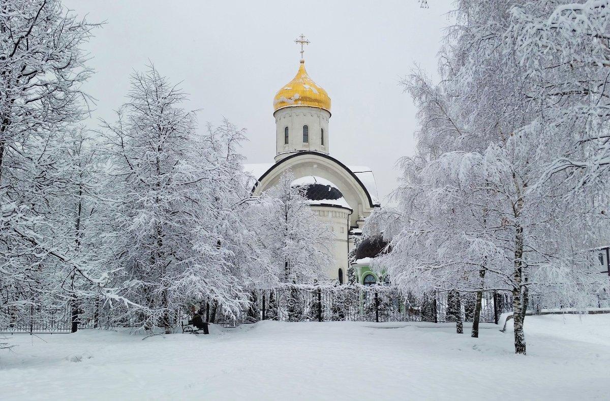 Храм Преподобной Евфросинии, великой княгини Московской в Котловке - Константин Анисимов