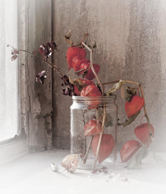 Этюд с физалисом на старом окне