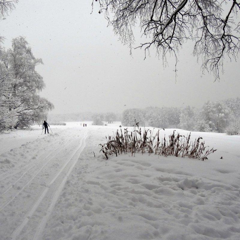 лыжная трасса - Валентина. .