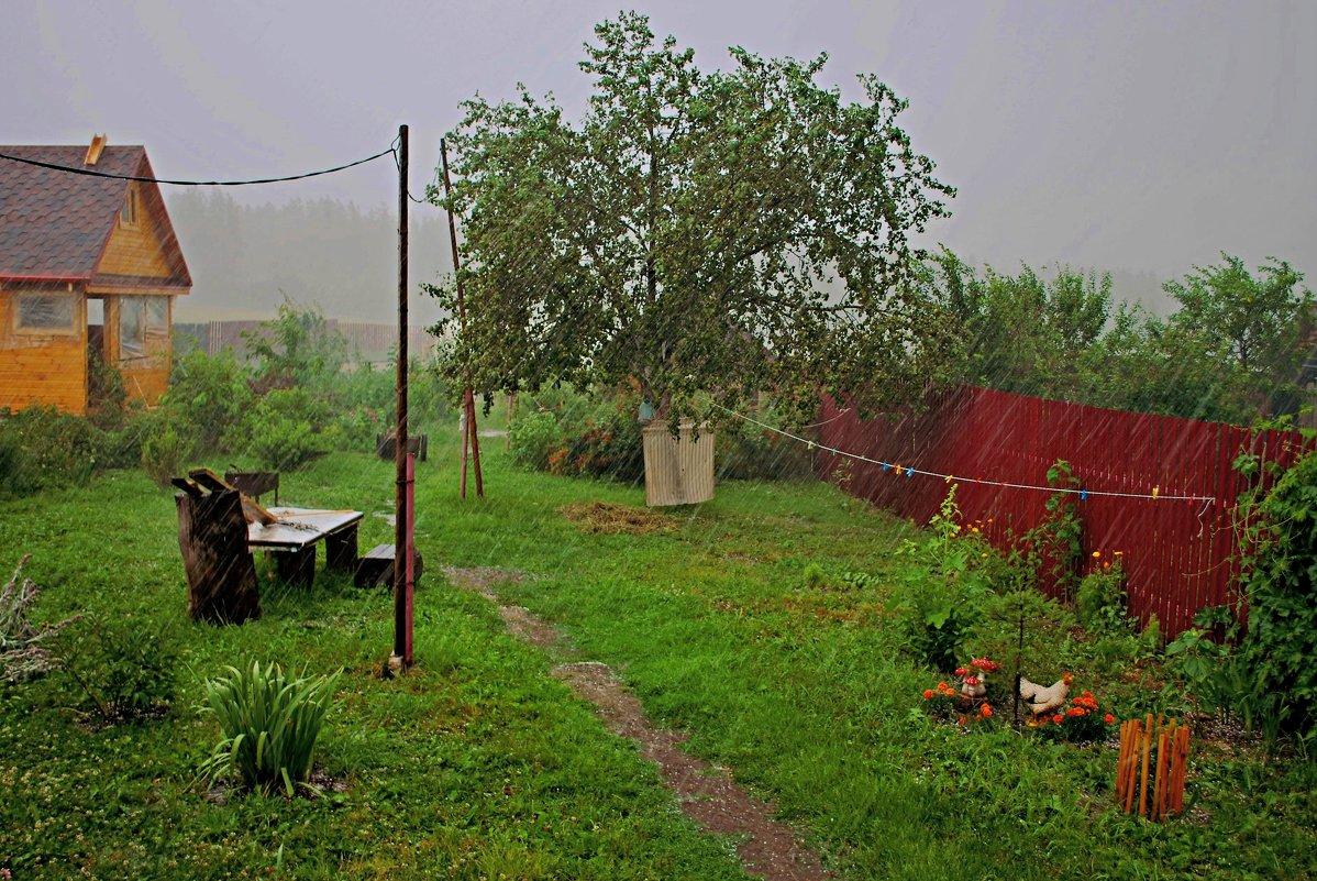 Июльский дождь. - Николай Масляев