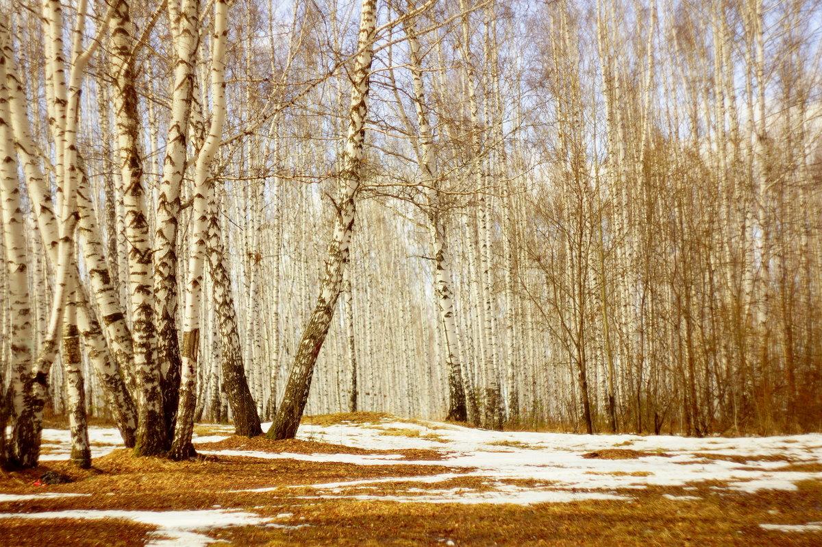 Вот уж снег последний в поле тает.. - Анна Суханова