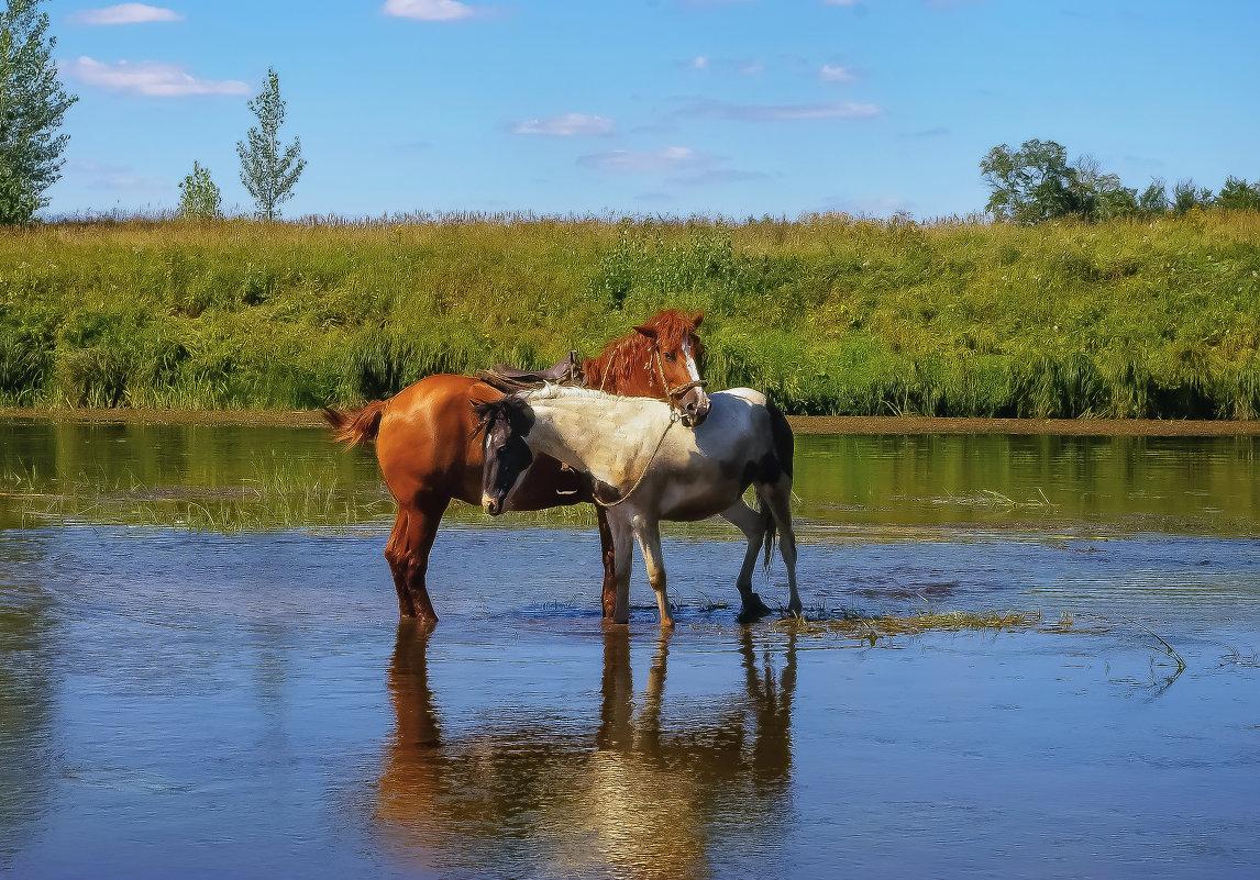 Лошадки на реке Чепца - Владимир Максимов