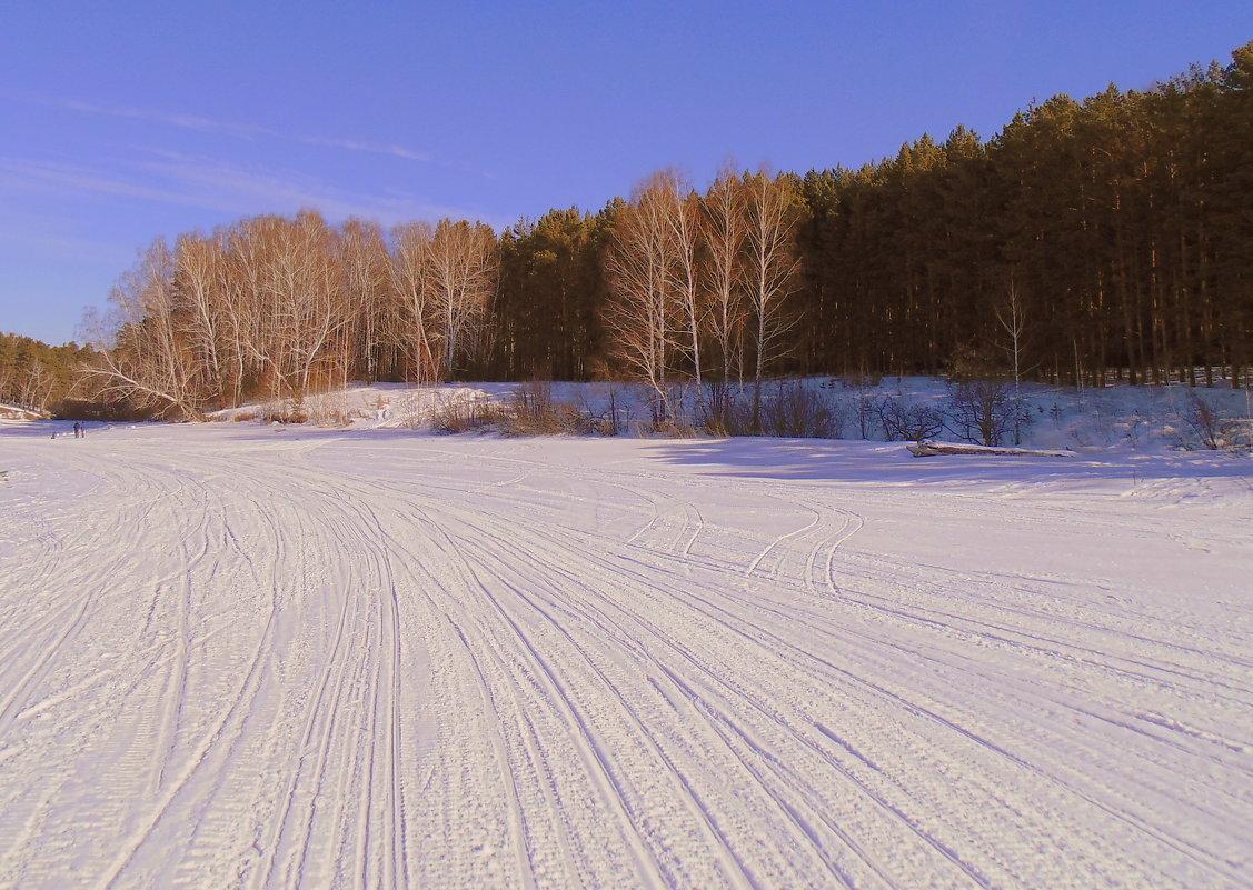 По накатанному льду в лес. - Мила Бовкун