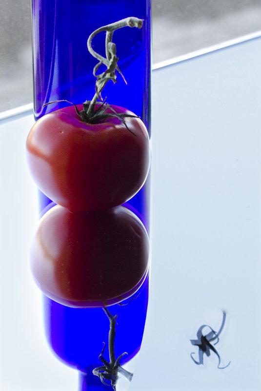 Красное на синем... - galina bronnikova