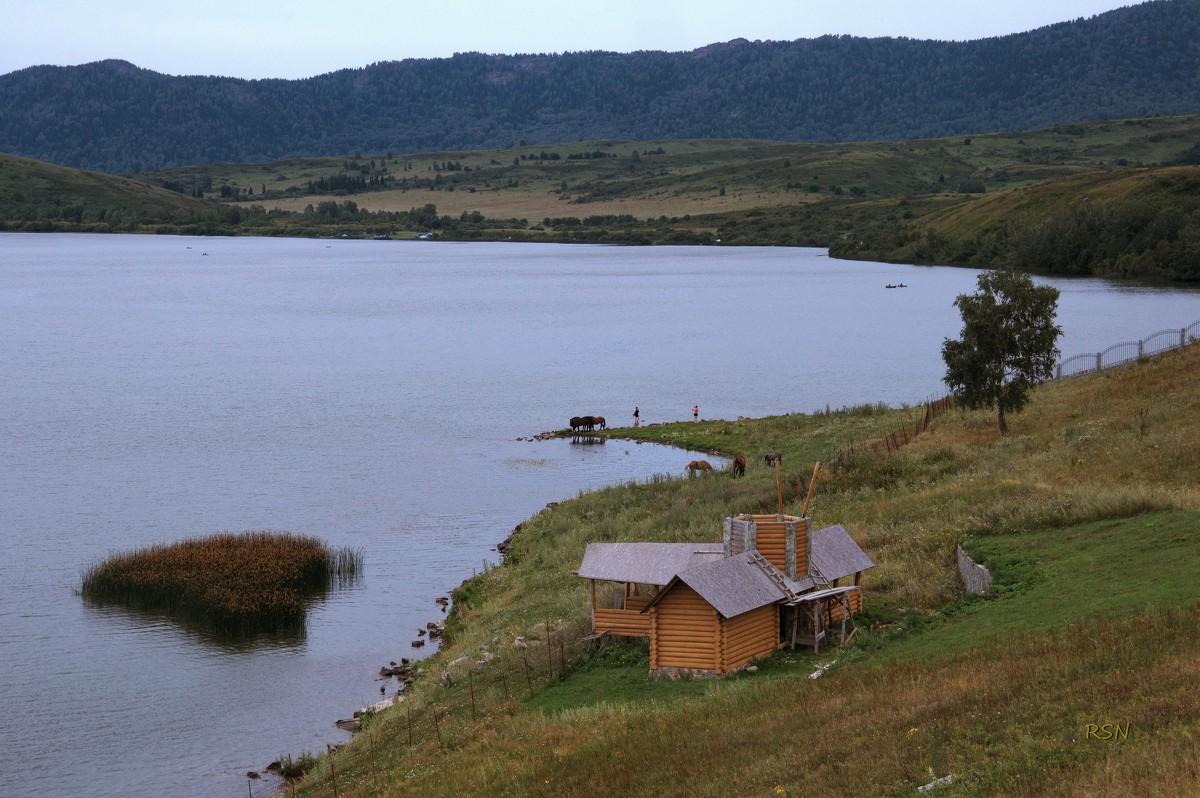 белое озеро алтайский край фото головокружения