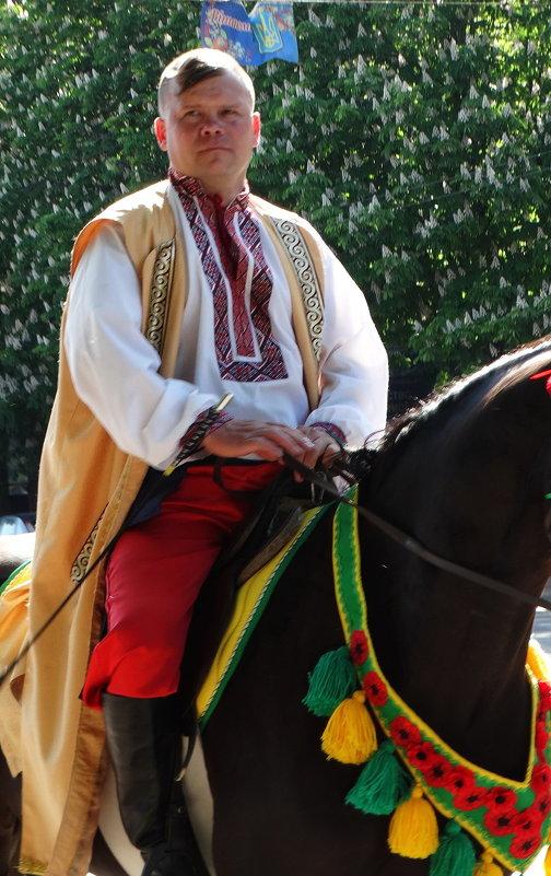 Украинский козак - Владимир Бровко