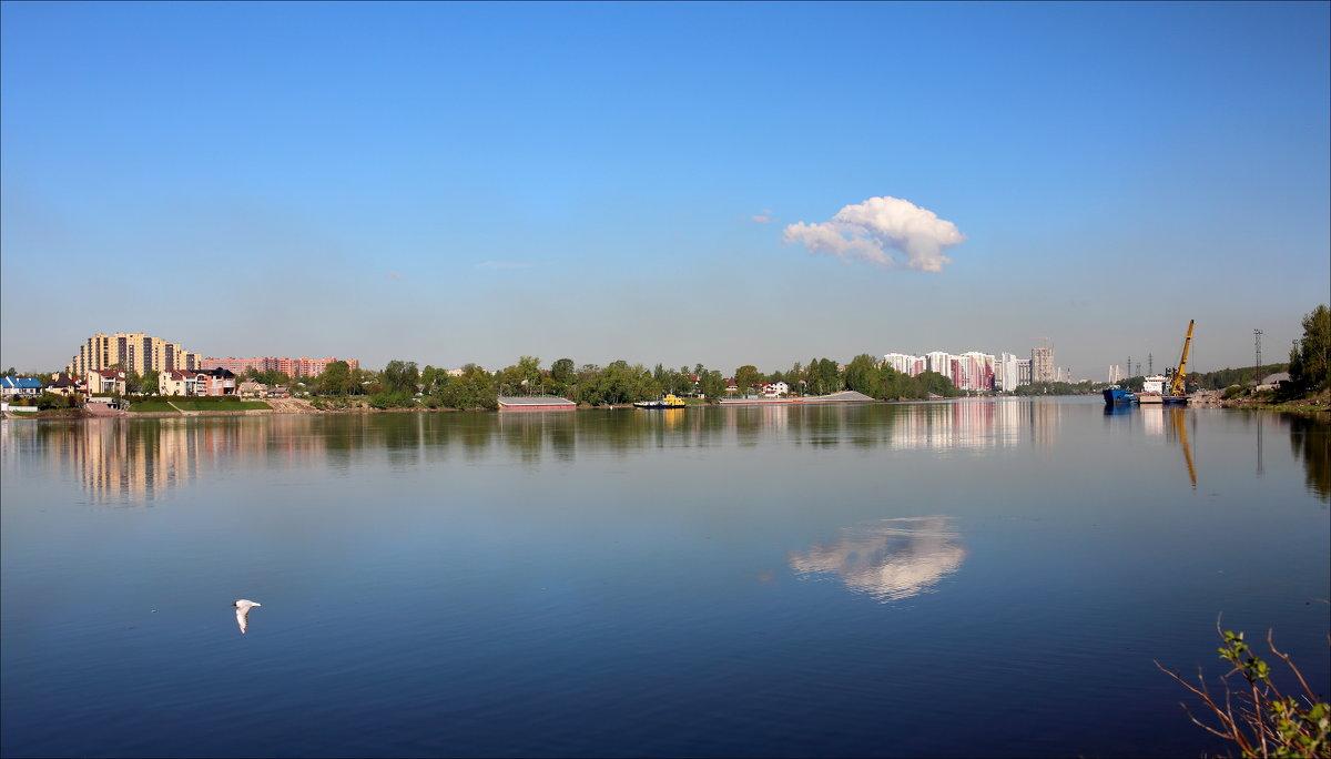 Облако в Неве - Александр Алексеенко