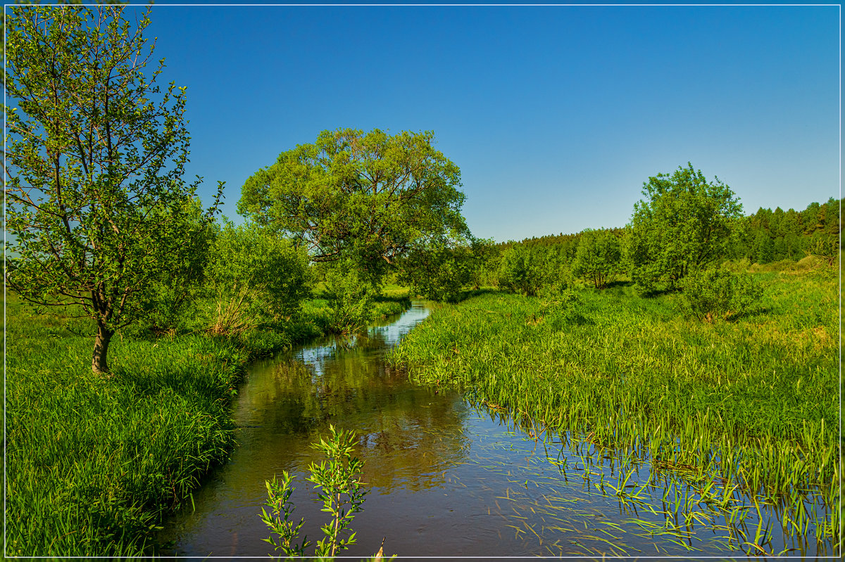 18 мая 2019, река Дрезна - Андрей Дворников