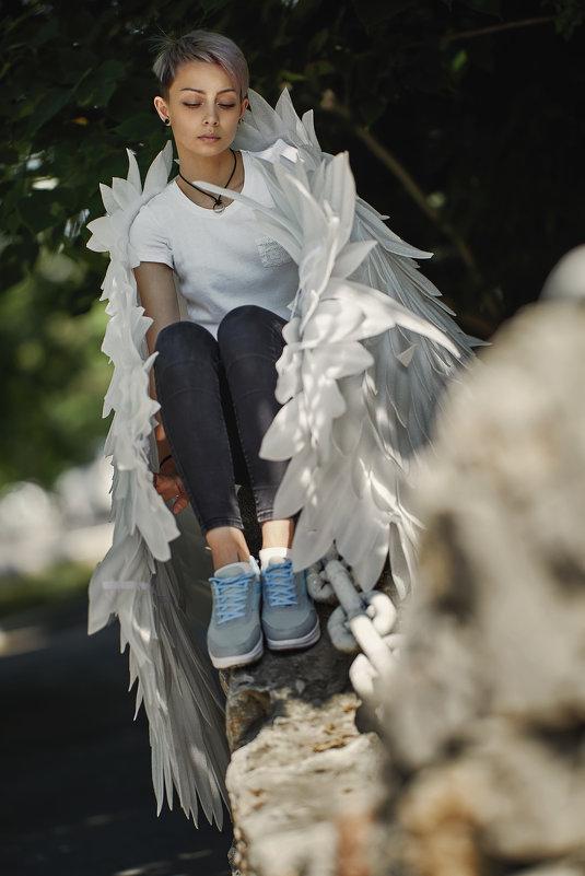 wings - Vitaliy Dankov