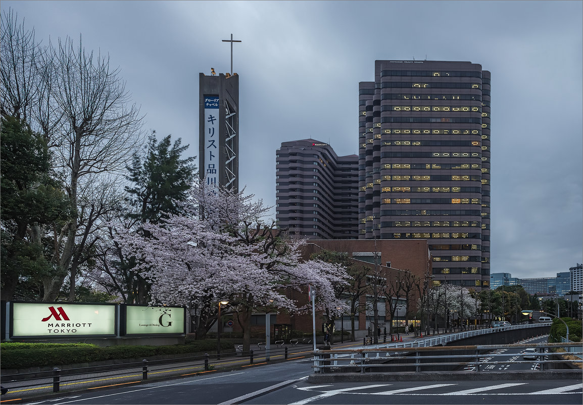 Вечерний Токио, район Синагава - Shapiro Svetlana