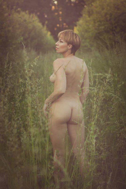 Янтарь лета - Елена