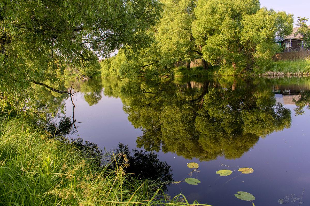 Пейзаж у старой речки - Владимир Ефимов