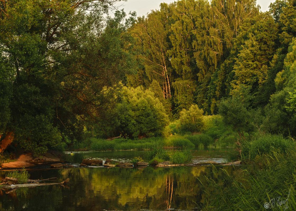 Старая плотина - Владимир Ефимов