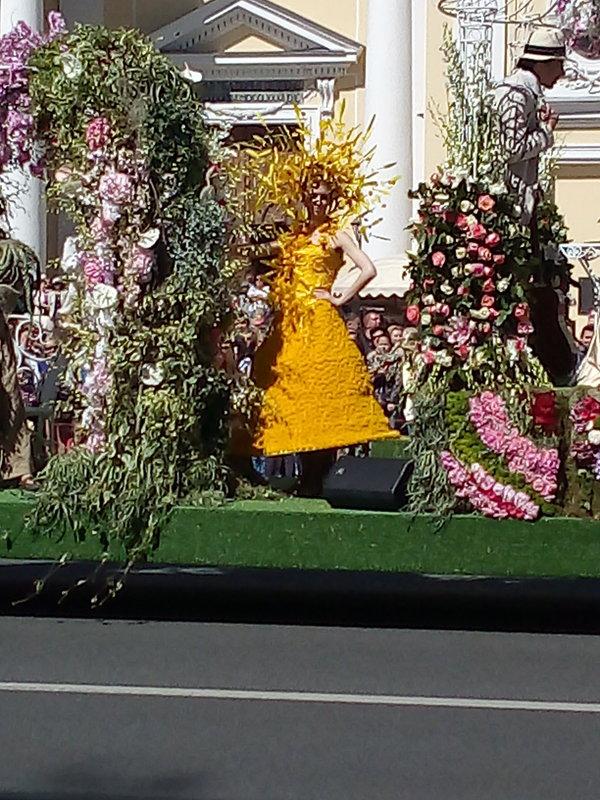 Парад цветов на Невском проспекте. - Светлана Калмыкова