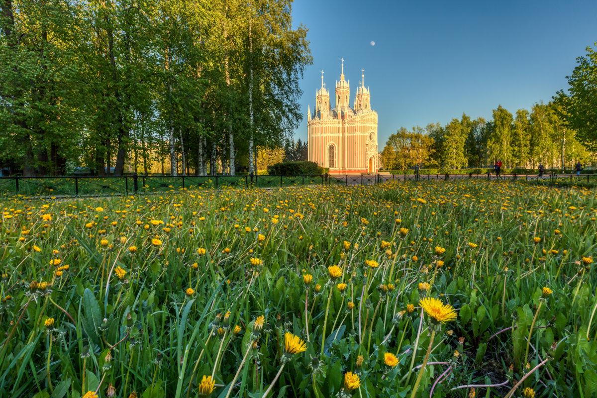 Чесменская церковь - Владимир Колесников