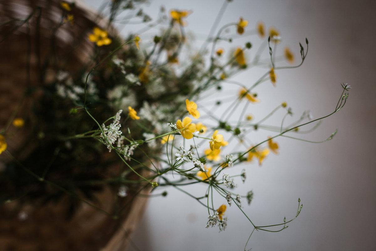 Лето-время полевых цветов - Nika Polskaya