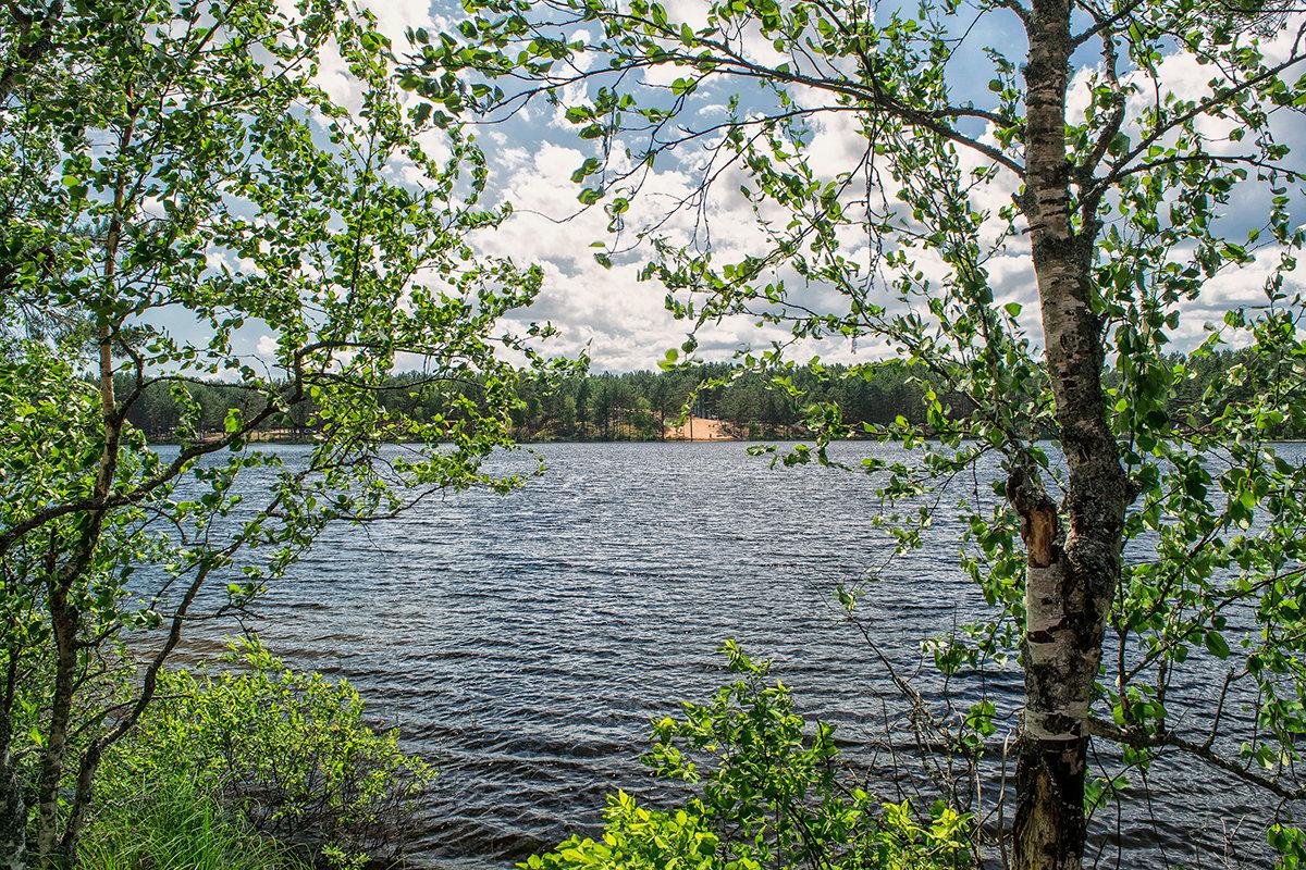 Лето на озере. - Владимир Филимонов