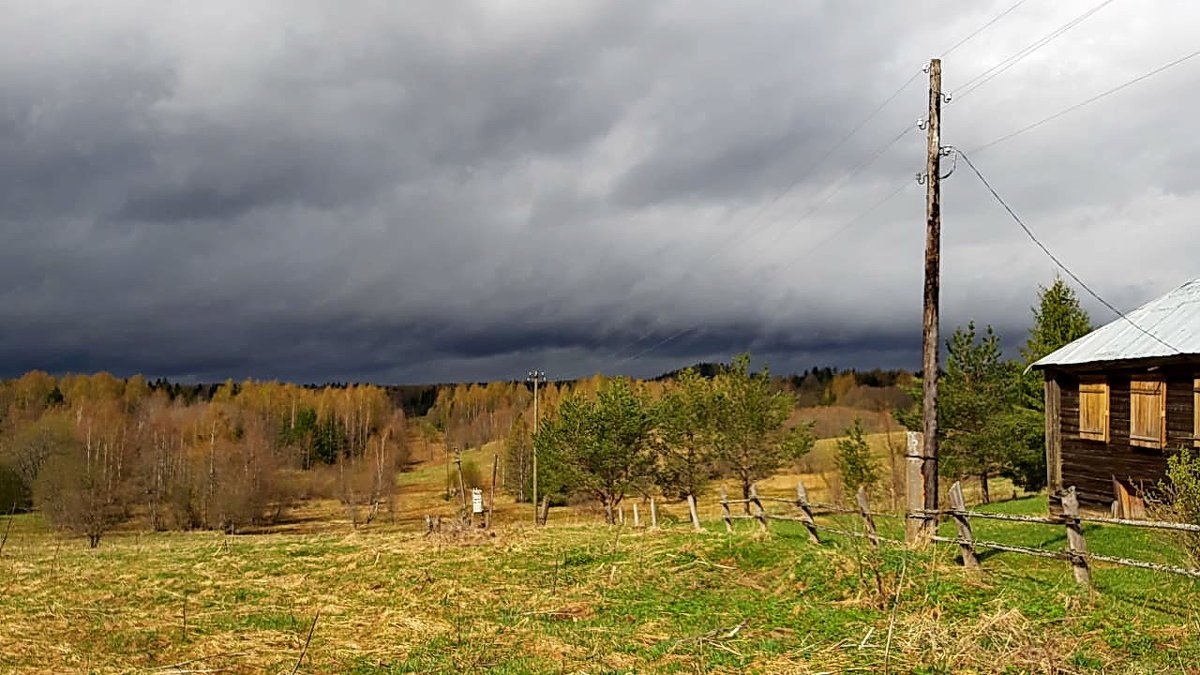 Перед грозой - Николай Танаев