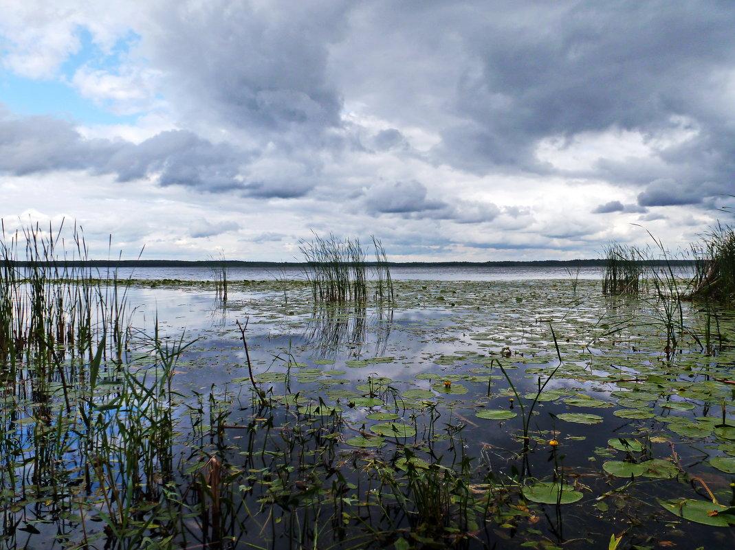 Вечер над озером - Игорь Пилатович