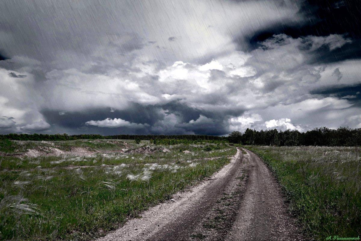 Одни наслаждаются дождем, другие просто промокают.. :-) - Андрей Заломленков