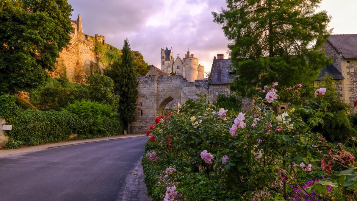 цветущая дорога к замку Монтрейль-Беллэ