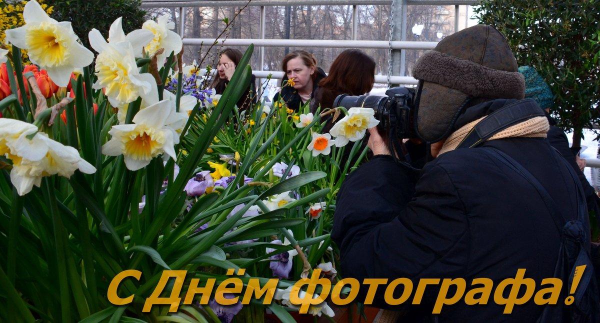 Поздравляю вас с Днём фотографа, друзья! - Ольга Русанова (olg-rusanowa2010)