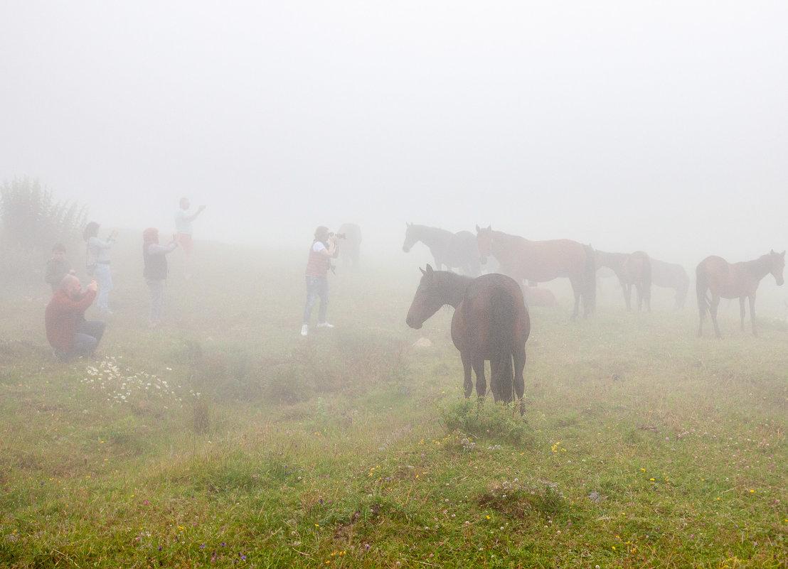 Люди и лошади - Геннадий Мельников