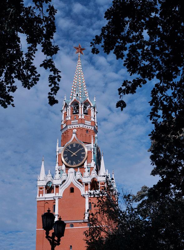 Троицкая башня ... - Лариса Корженевская