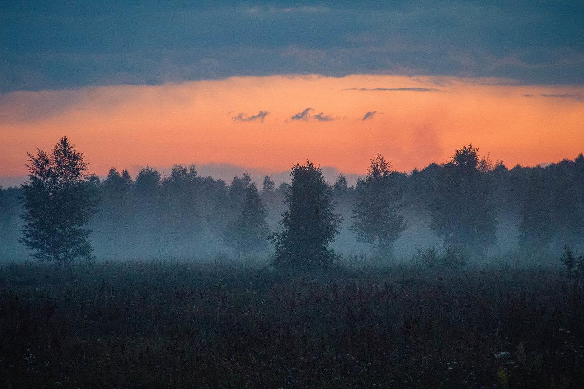 Туман и закат - Виктория Невская