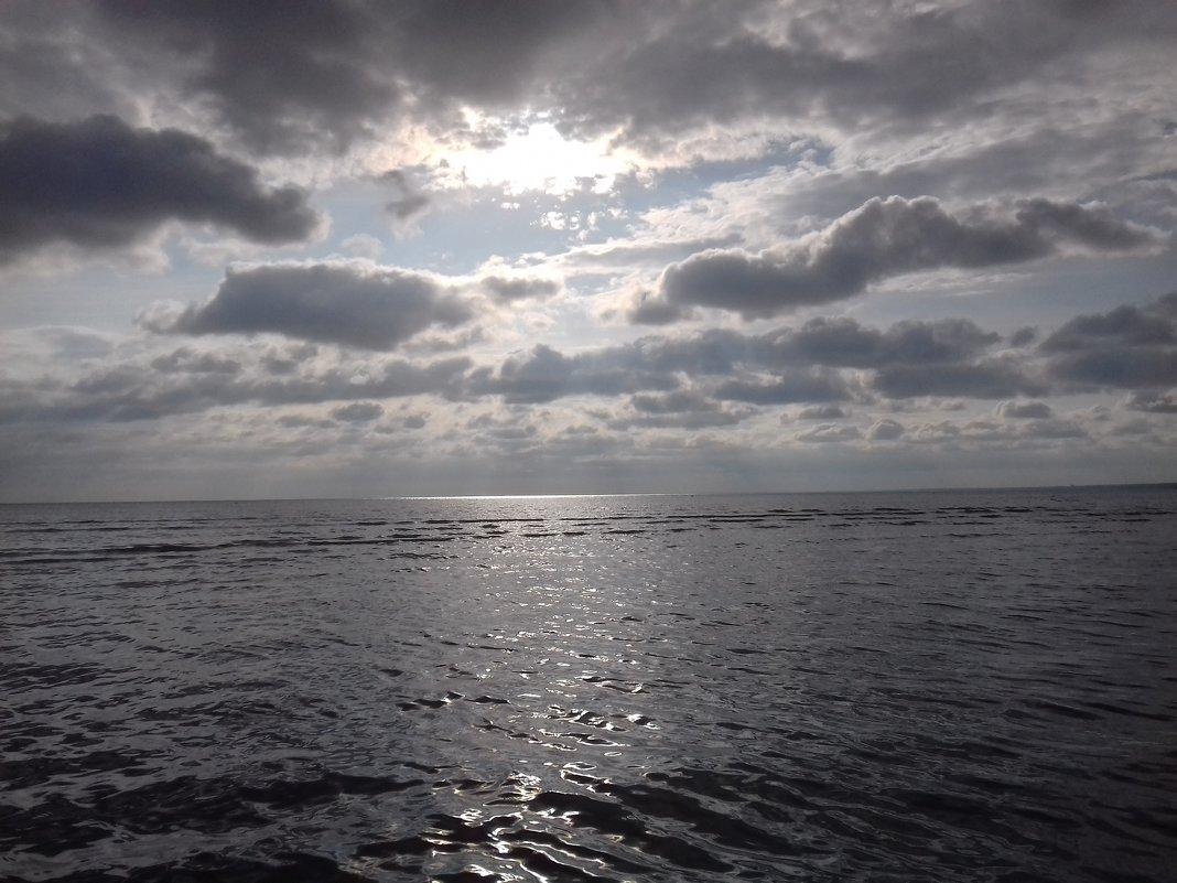 Залив - Сапсан
