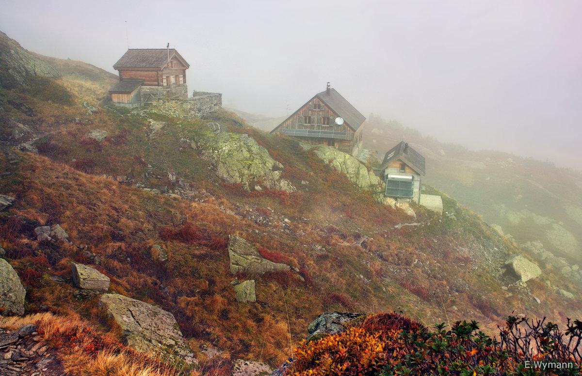 горный туман - Elena Wymann
