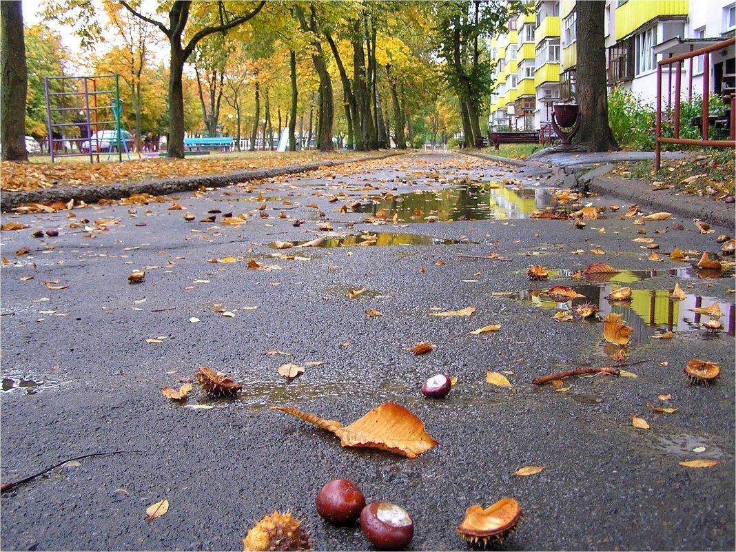 Дождливый день - Геннадий Худолеев