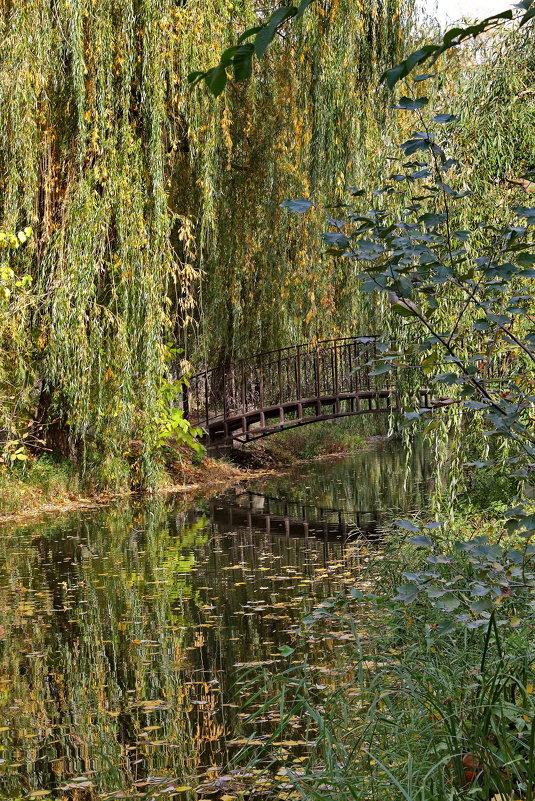 Осень в старом парке - Анатолий Стрельченко