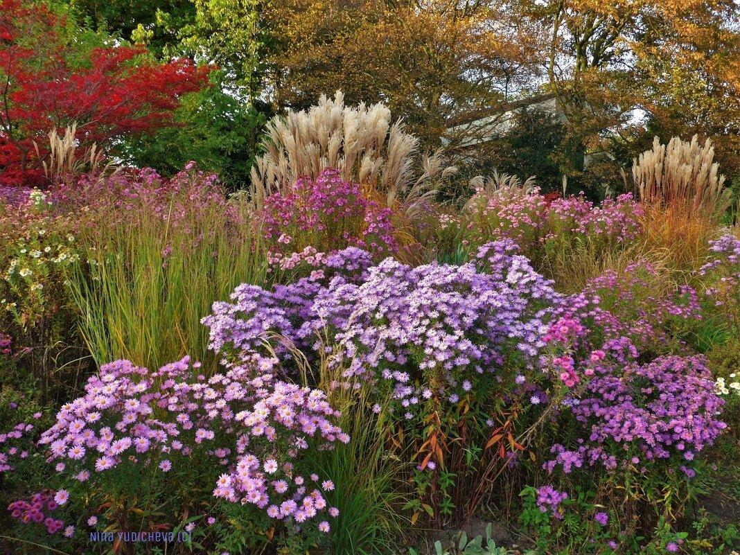 Осень в парке цветов - Nina Yudicheva